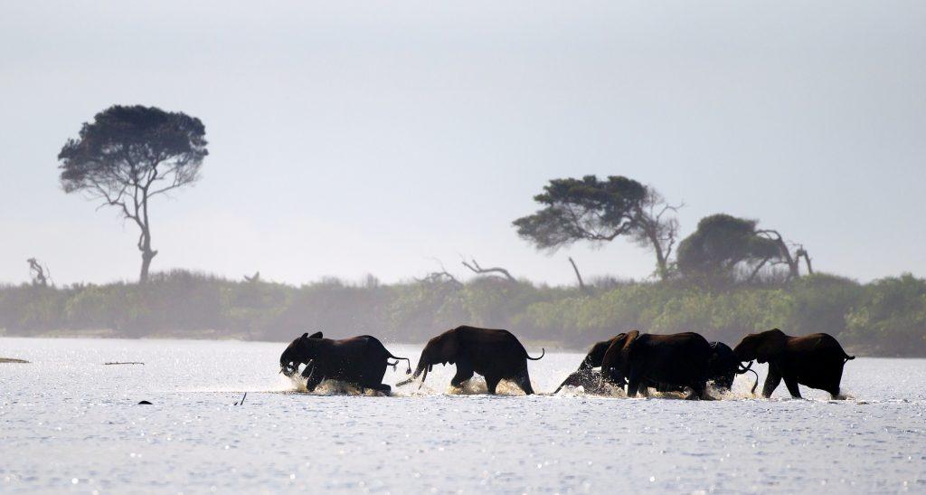 Loango National Park | Sundowner Wildlife Holidays