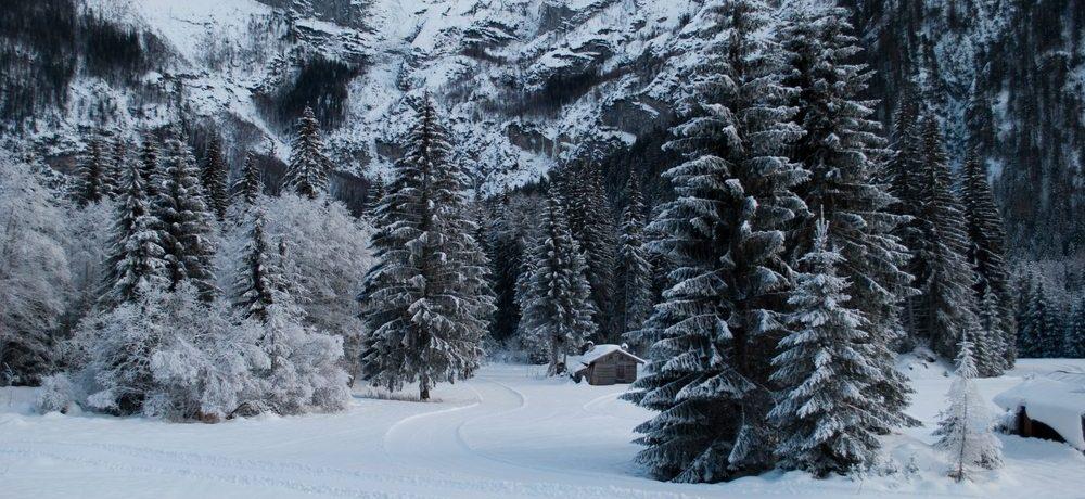 Abruzzen National Park, Italië
