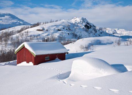 Omgeving Tromso